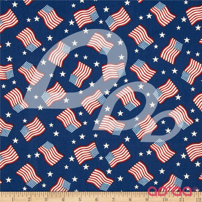 Stars & Stripes II Tossed Flags & Stars Red/White/Blue