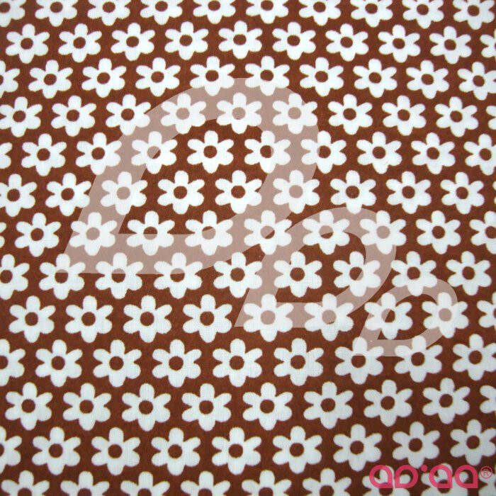 Brown and White flowers