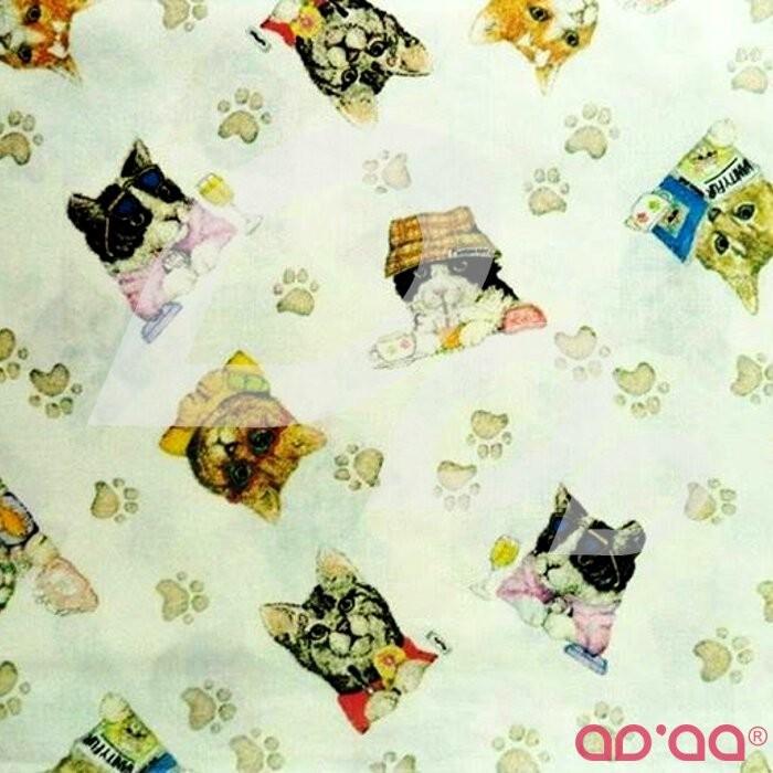Swett Cats