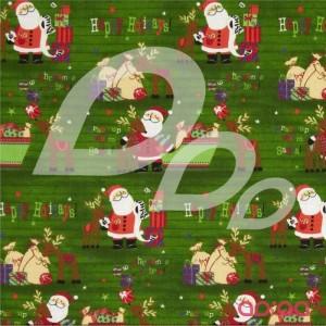Seasons Greetings Santa & Reindeer Green'