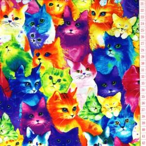 Cat's Multi Color